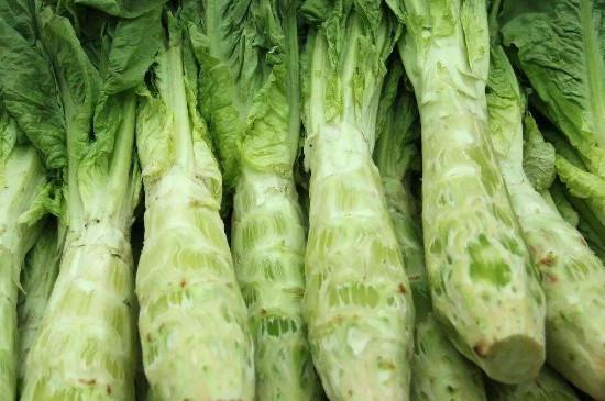绿色蔬菜图片及名称